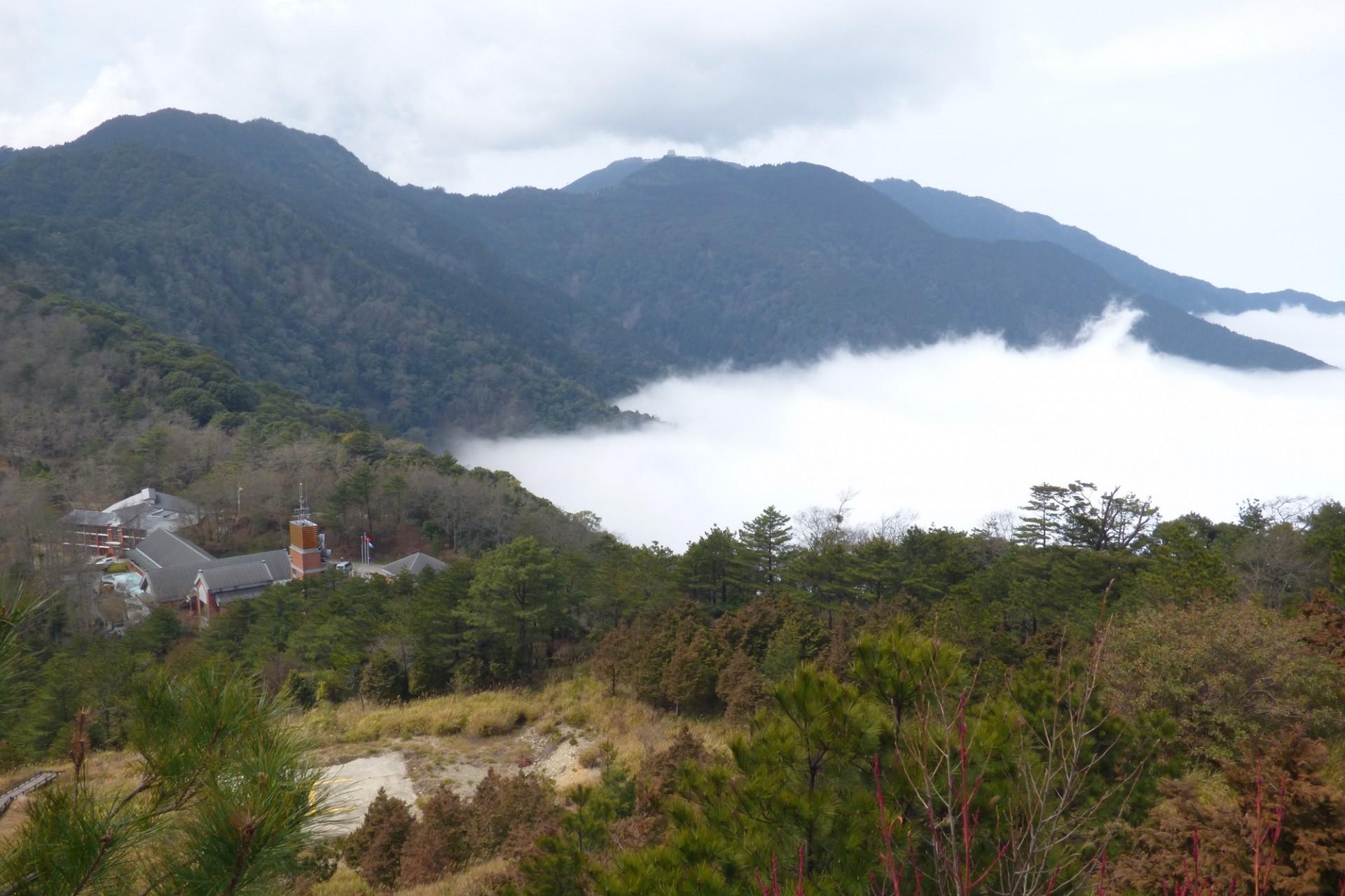 聖稜下的雲霧森林~觀霧雪霸森態之旅二日遊