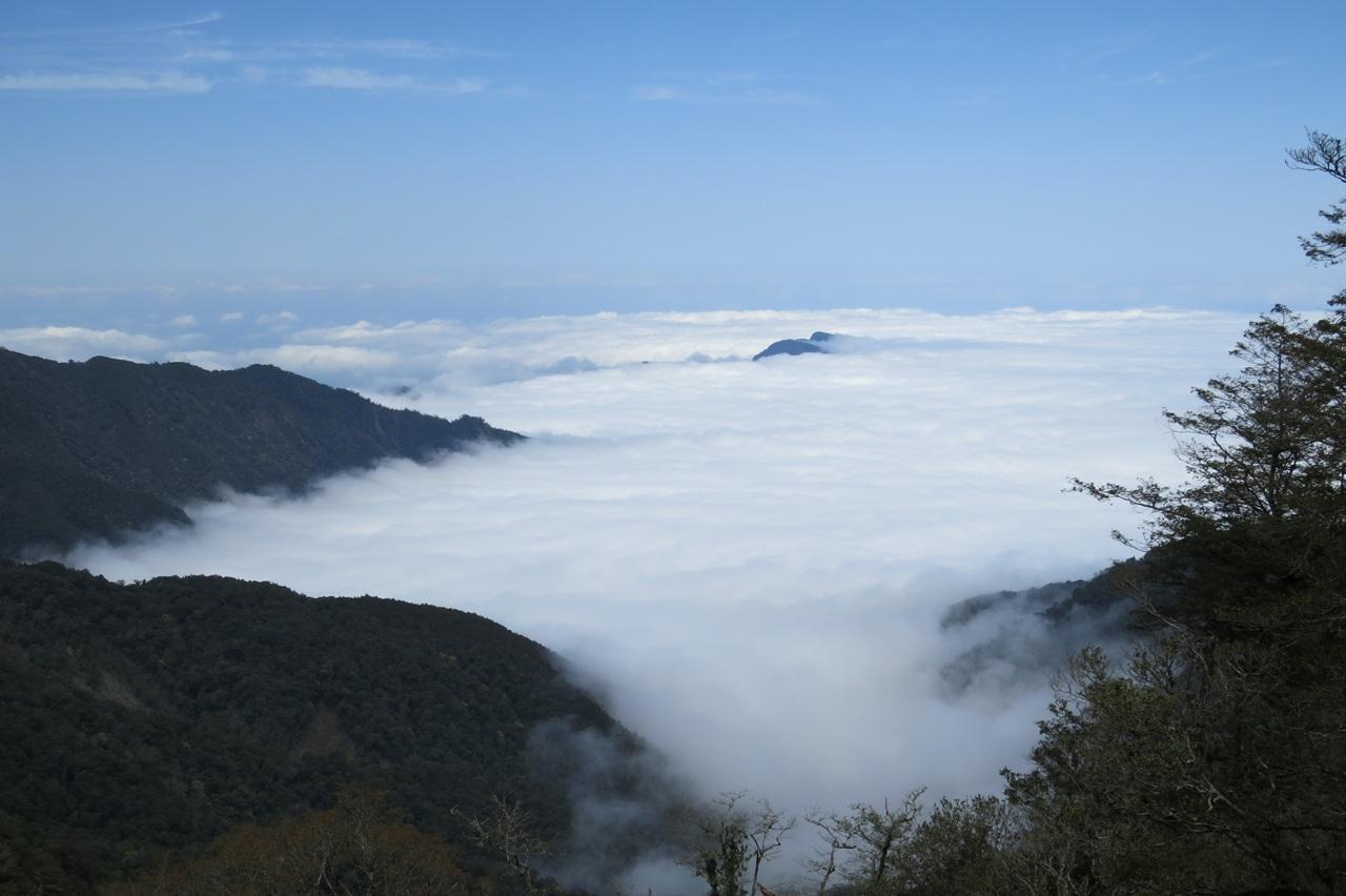 聖稜下的雲霧森林~觀霧雪霸森態之旅(三日遊)