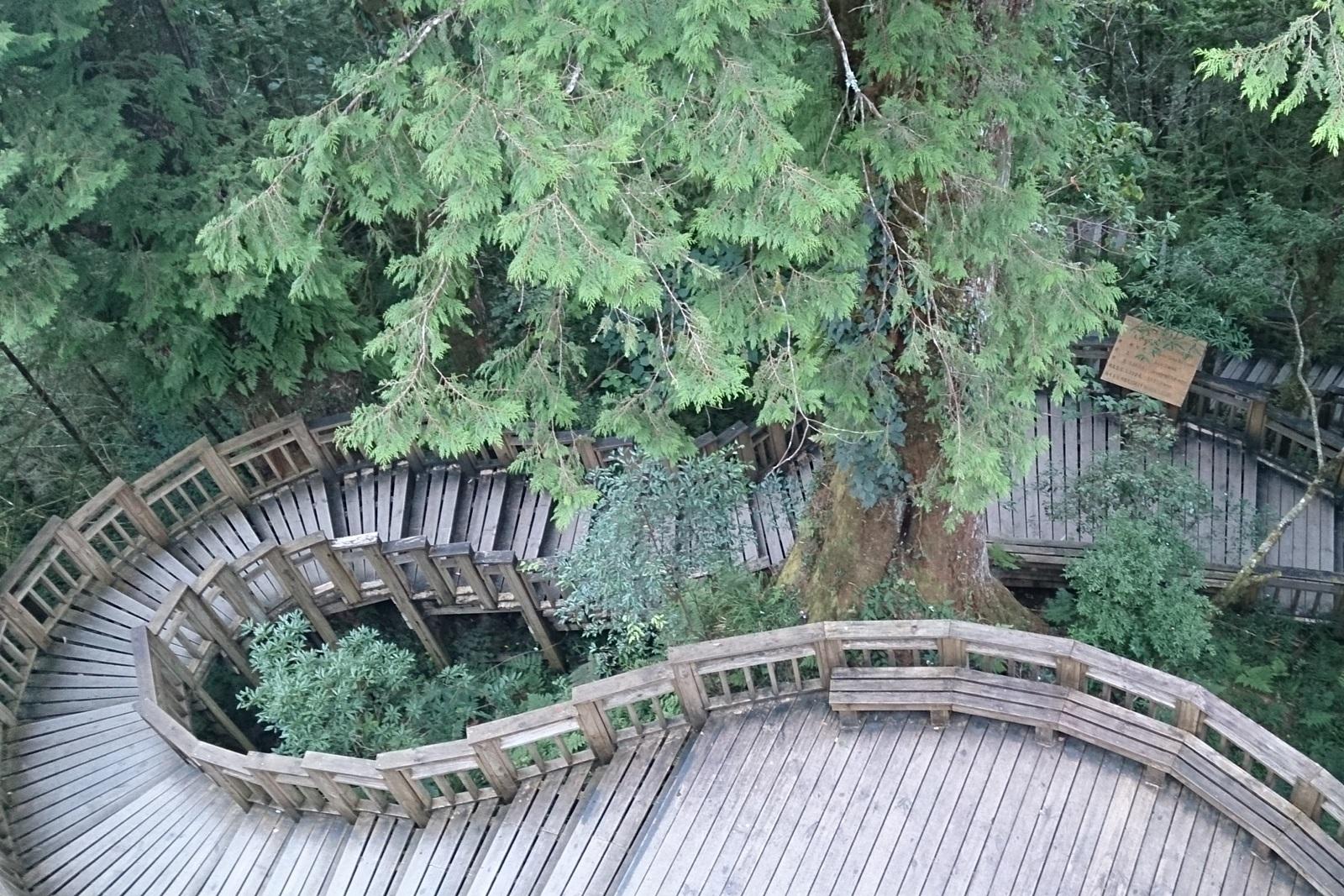 明池棲蘭神木園森態之旅二日遊